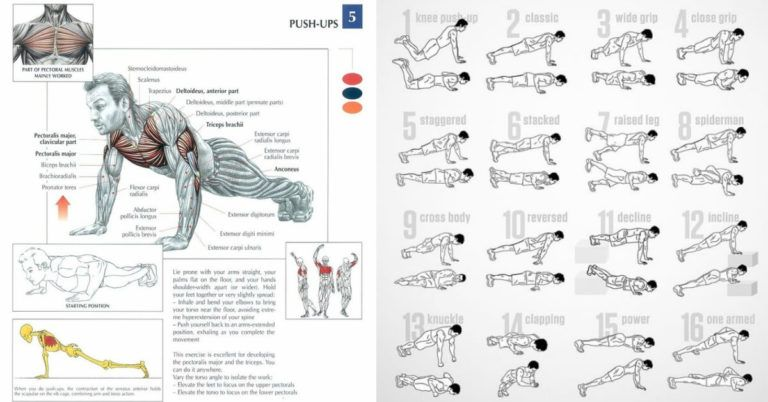 Strong Muscle Definiendo Push Up Workout Con 5 Ejercicios